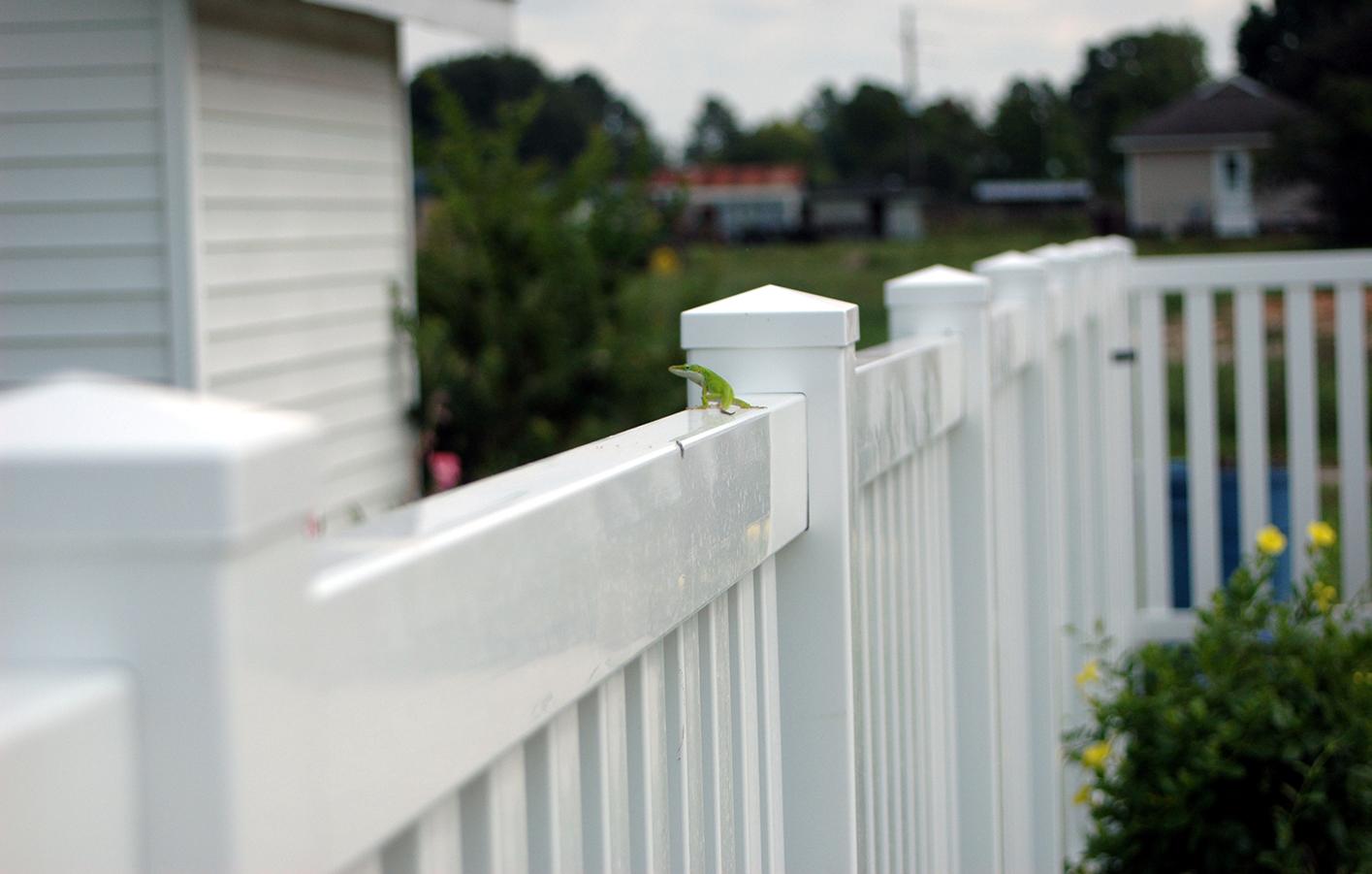 Stunning Sichtschutzzaun Aus Kunststoff Gute Alternative Holzzaun